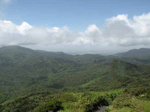 Vista en el Yunque